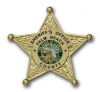 Palm Beach Sheriff Badge